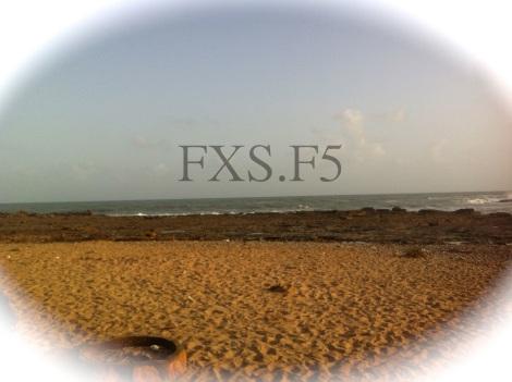 FXS.F5